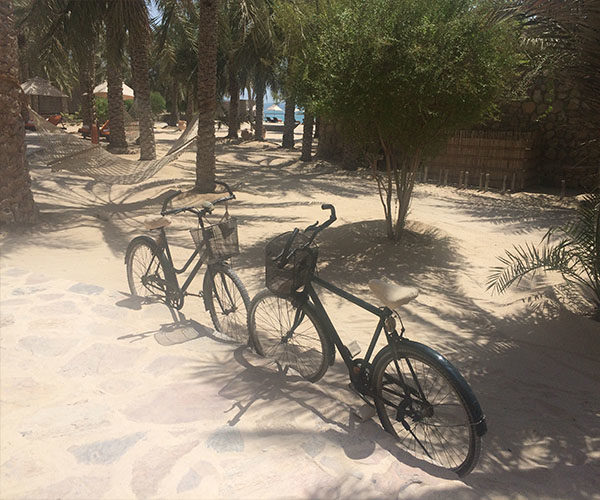 six senses zighy bay bicycle